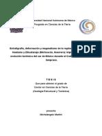 TesisMartini1008- probables formaciónes metamorficas.pdf
