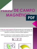 ficha ley de Gauss para el campo magnetico.pdf