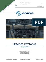Pmdg 737ngx Tutorial 1