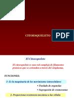 Citoesqueleto.ppt