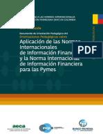 Aplicación de las normas internacionales IFRS.pdf