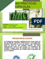 Buenas Practicas Agricolas.pptx