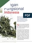 Pangan Fungsional Indonesia