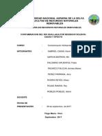 CONTAMINACION DEL RIO HUALLAGA POR RESIDUOS SOLIDOS-CAUSA Y EFECTO