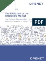 WP 133 Openet Evolution of the Wholesale Market (1)