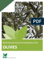 Olive Booklet