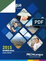 2015-annual-report.pdf