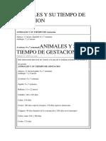 Animales y Su Tiempo de Gestacion