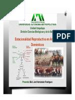Estacionalidad Reproductiva Especies Domesticas Joel Hdz