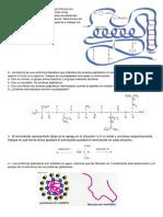 cuestionario Proteínas
