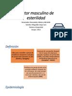 Factor Masculino de Esterilidad