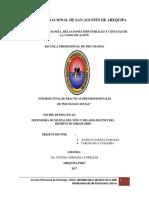Informe Final Demuna