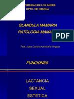 1. Patología de Glandula Mamaria.pdf