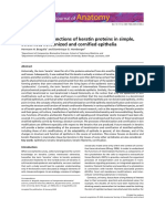 Structure and Functions of Keratin Proteins