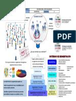 5. Segmentacion de Mercados.docx