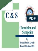 Cherubim Seraphim Presentation