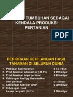 DPT-Kuliah I.pdf