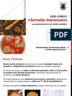 IPC Serratia