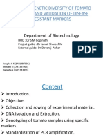 Study of Genetic Diversity of Tomato Varieties And