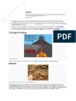 igneous rocks.pdf