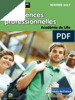 Les Licences Pro Rentree 2017 HdFL