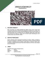 belut.pdf