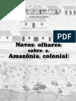Novos Olhares sobre a Amazônia colonial