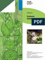 essbare_wildpflanzen_0.pdf