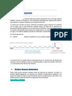 ÁCIDOS GRASOS, Prot y Aminoac