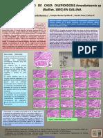 #Dilepididosis Amoebotaenia,Estudio de Caso.