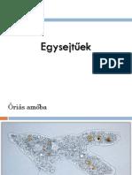 FajfelismersVrusokBaktriumokEgysejtek.pdf