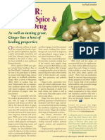 GINGER- Common Spice & Wonder Drug