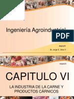 captulov-crnicosii-110701170037-phpapp02.pdf