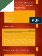 INYECCION DE POLIMEROS.pptx