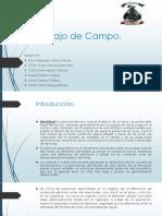Trabajo de Campo.pptx