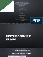1-EXPOSICION-TEJIDO-EPITELIAL (1)