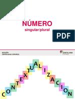 PPT_N_mero_singular-plural.pptx