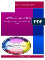 Analisis Causa Raiz