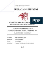 PROYECTO DE INVESTIGACION 2017 TITO.docx