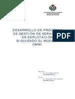 Desarrollo de Procesos - Raggio-CMMI.pdf