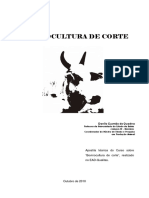 Leitura_Complementar_01_Apostila_Bovinocultura.pdf