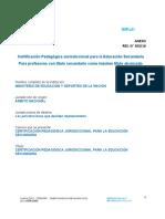 Res Cfe 303 16 Anexo Certificacion Pedagogica Jurisdiccional Para Docentes Con Titulo Secundario 59233c053049c