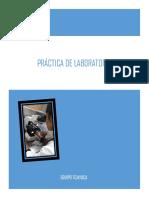 Practica Del Laboratorio