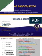 Terreno Basocolítico.pdf