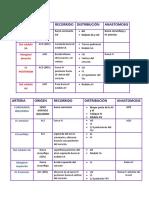 Resumén de Circulacion Coronaria
