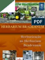 HERBORIZAÇÃO 123