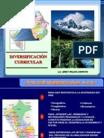 DIVERSIFICACION 2009 - copia.pptx