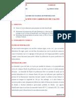 Lab Densificacion CaCO3