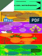 el ciclo del nitrogeno.pdf