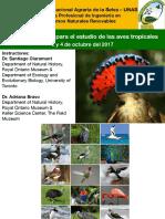 Taller Metodos Basicos de Muestreo de Aves
